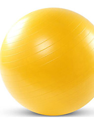 Adult yoga ball