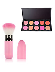 10 BlushMakeup Brushes Wet Face Concealer / Uneven Skin Tone China Others