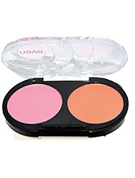 2 Blush Matte Powder Coloured gloss Face Multi-color China NOVO