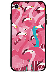 Flamingo Pattern Case Back Cover Soft Acrylic For iPhone 7 Plus iPhone 7 iPhone 6s Plus 6 Plus iPhone 6s 6 iPhone 5s 5 SE
