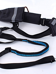 Dog Collar / Leash Adjustable/Retractable / Running / Safety / Soft Patchwork Black / Blue Fabric / Nylon