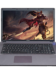 HASEE Gaming laptop P5 17.3-Inch Intel core i7 Quad-core 2.5GHz 8GB RAM 1T HDD 2G NVIDA Discrete Graphics