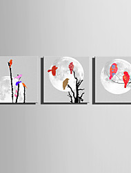 E-HOME Stretched Canvas Art Colorful Birds On A Branch Decoration Painting  Set of 3