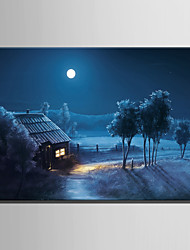 E-HOME® Stretched LED Canvas Print Art Suburban House LED Flashing Optical Fiber Print One Pcs