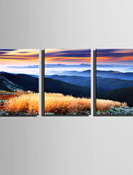 E-HOME Stretched Canvas Art Autumn Mountain Decoration Painting Set Of 3