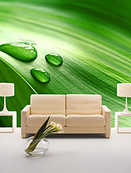 JAMMORY Art DecoWallpaper For Home Wall Covering Canvas Adhesive required Mural Green Tree Leaves Background XL XXL XXXL