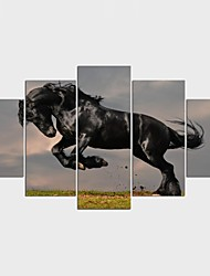 Stretched Canvas Print Animal Classic,Five Panels Canvas Any Shape Print Wall Decor For Home Decoration