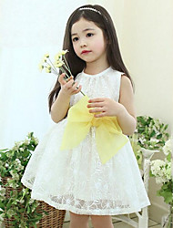 Summer Girls Princess Lace Embroidered Organza Dress Bow