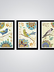 Abstract Birds and Flowers Modern Canvas Print Art 3pcs/set Animal Picture for Wall Decoration