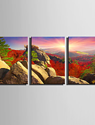 E-HOME Stretched Canvas Art Sunrise on The Mountain Decoration Painting Set Of 3