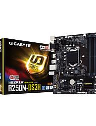 GIGABYTE B250M-DS3H motherboard Intel B250/LGA 1151