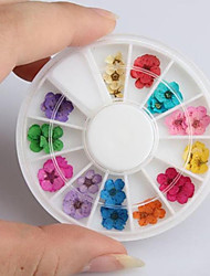 36PCS Mixed Color Natural Mini Dried Flower Nail Art Decoration