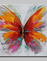 Hand-Painted Abstract Butterfly Animal Oil Painting On Canvas Modern Wall Art Pictures For Home Decoration Ready To Hang