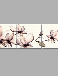 Натянутым холстом печати Цветочные мотивы/ботанический Modern,3 панели Холст Горизонтальная Печать Искусство Декор стены For Украшение