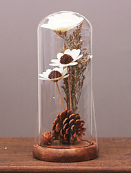 Transparent glass display cover glass ornaments creative modern home