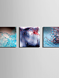 E-HOME Stretched Canvas Art Dew World  Decoration Painting One Pcs