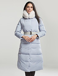 Women's Long Down Coat,Simple Casual/Daily Solid-Polyester White Duck Down Long Sleeve Blue Gray
