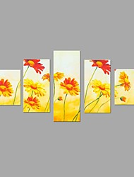 HD Print Beautiful Sun Flower Painting Wall Art 5pcs/set Home Office Decor (No Frame)