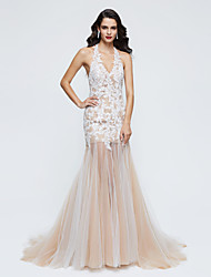 Formal Evening Dress - Elegant Trumpet / Mermaid Halter Sweep / Brush Train Lace Tulle with Lace Pleats