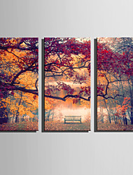 E-HOME Stretched Canvas Art Autumn Park Scenery Decoration Painting Set Of 3