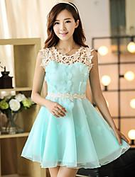 Sinal de primavera e verão vestido de organza feminino mola coreano senhoras slim saia rendas