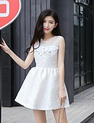 Signe au début de l'automne nouvelles dames slim perspective robe de dentelle tutu jupe robe coutures