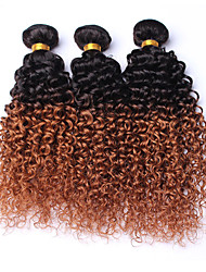 Ombre Hair Bundles 3 Bundles Ombre Human Hair Peruvian Virgin Hair Kinky Curly Ombre Weave Peruvian Loose Wave 1B/27 Color