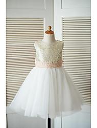 Une robe à rayures en ligne avec une ligne de genou - robe à manches en tulle sans manches avec applique