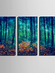E-HOME Stretched Canvas Art Fantastic Woods Decoration Painting Set Of 3