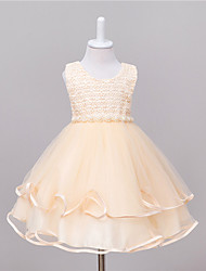 Princess Knee-length Flower Girl Dress - Tulle Netting Polyester Taffeta Jewel with Applique Sequin Appliques Bow(s) Pearl Detailing lace