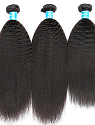 Vinsteen Kinky Straight Human Hair Extensions 3Pcs Malaysian Hair Weave Natural Black Human Hair Weft Wholesale Price Human Hair Weaves