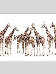 Peint à la main Animal Panoramique Verticale,Moderne Classique Un Panneau Toile Peinture à l'huile Hang-peint For Décoration d'intérieur