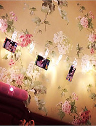 LED Battery Pack Light String Romantic Wedding Luminous USB Photo Clip Decorative Light String