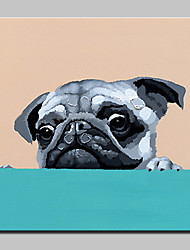 Hand Painted MOE of Dog Animal Oil Painting On Canvas Modern Art Wall Pictures For Home Decoration Ready To Hang