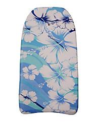 Planche à voile Sports aquatiques Natation estivale essentielle