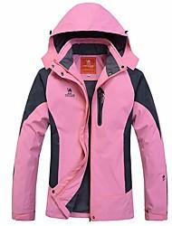 Mulheres Saias e Vestidos Esqui Acampar e Caminhar Esportes de Neve Snowboard Primavera Inverno Outono