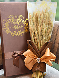 Barley Harvest Season Gift Box Plant For Mother's Day Gift
