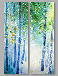 IARTS® Hand Painted Abstract Oil Painting Spring Woods Set of 2 with Stretched Frame Handmade Oil Painting For Home Decoration Ready To Hang