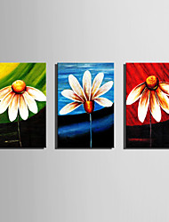 Mini Size E-HOME Oil painting Modern Colour Of Flowers Pure Hand Draw Frameless Decorative Painting  Set of 3