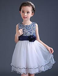 Vestido feminino da princesa do joelho - Vestido de polis sem mangas