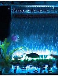 Aquarium Autre