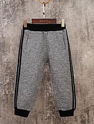 Boys' Solid Pants-Cotton Fall