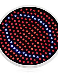 24W E26/E27 Luci LED per la coltivazione 200 1500 lm Rosso / Blu AC 85-265 V 1 pezzo