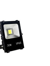 HC-Tgd056 30LED Solar Infrared Body Sensor Light LED Flood Light Waterproof No Radiation