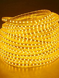20M  220V Higt Bright LED Light Strip Flexible 5050 1200SMD Three Crystal Waterproof Light Bar Garden Lights with EU Power Plug