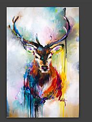 Ручная роспись Животное Художественный Абстракция Cool 1 панель Холст Hang-роспись маслом For Украшение дома