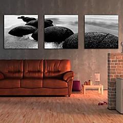 doek set van 3 landschap van de kust van stenen op gespannen doek klaar om op te hangen