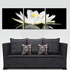 Leinwand Kunst Blumen anmutigen weißen Set von 3