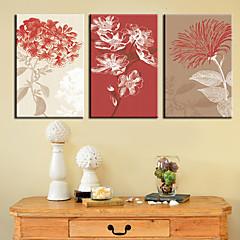 Op gespannen doek kunst Bloemen Verse Blush Set van 3