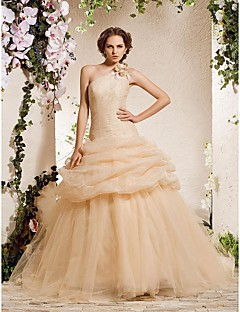 Lan Ting Ball Gown Plus Sizes Wedding Dress - Champagne Chapel Train One Shoulder Organza